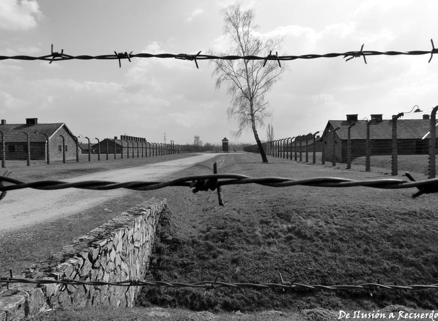campo-de-concentracic3b3n-de-birkenau